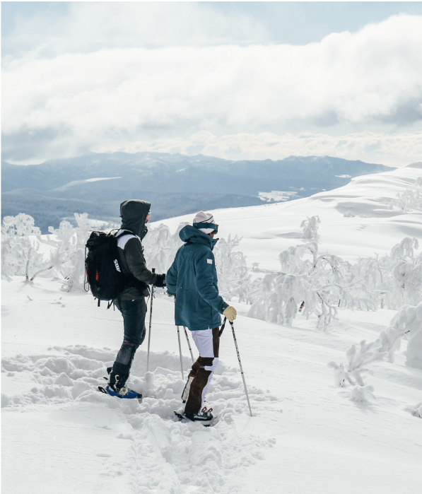 monte con nieve